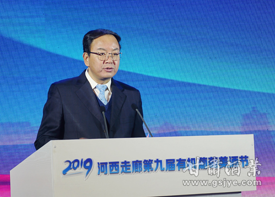 10、甘肃省人民政府副省长张世珍出席会议并讲话.JPG